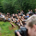 voyage chine chengdu panda chengdu research base of giant panda breeding place tian an men cité interdite cité pourpre interdite centre de la terre pékin grande muraille tombeaux ming mutianyu dynastie Qi du nord clement philippon photographe chinois canon pollution