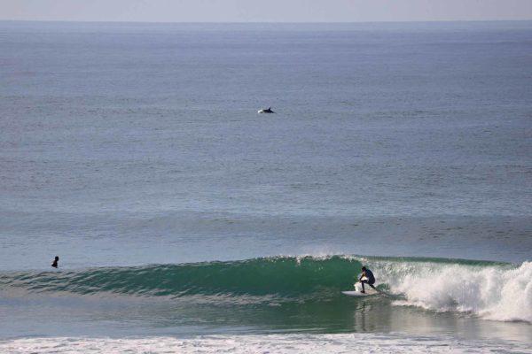 photographe surf france clement philippon
