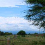 Safari Tanzanie Zanzibar